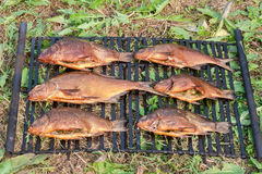 Smoked fresh fish Royalty Free Stock Photo