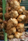 Smoked Garlic Royalty Free Stock Image