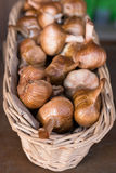 Smoked garlic in a wicker basket Stock Image