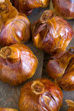 Smoked garlics Stock Image