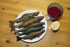 Daily catch - fisherman's supper. Stock Image
