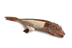 Smoked gurnard fish Royalty Free Stock Images