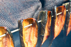 Smoked herring Stock Photos