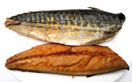 Smoked mackerel. A plate with two smoked mackerel on it, over white royalty free stock photography