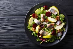 Smoked mackerel with apples, walnuts, beets and various lettuce stock photo
