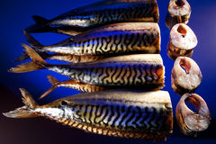 Smoked mackerel Stock Image
