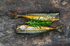 Smoked mackerel fish Royalty Free Stock Images