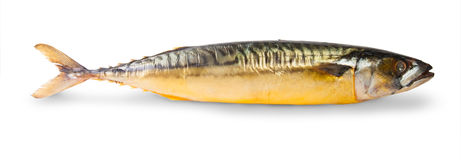 The Smoked Mackerel Royalty Free Stock Photo
