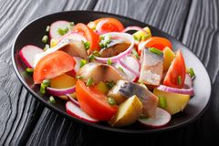 Smoked mackerel with potatoes, radishes, onions and tomatoes close-up on a plate. horizontal stock photos