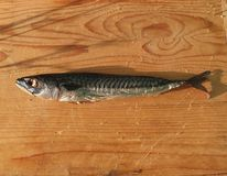 Smoked mackerel on wooden table Stock Images