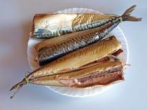 Smoked mackerels Stock Images
