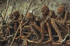 Smoked mummies Royalty Free Stock Photo