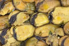 Smoked mussels Stock Photo