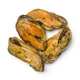 Smoked mussels Stock Image