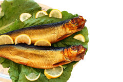 Smoked rega fishes Stock Images