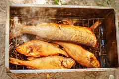 Smoked river fish Stock Images