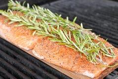 Smoked Salmon. Cedar Plank Smoked Rosemary Salmon Stock Photography