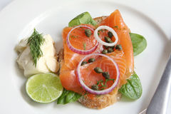 Smoked Salmon Appetizer Stock Images