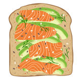 Smoked salmon and avocado on spelt toast bread. Delicious avocado and lox sandwich. Vector illustration. Royalty Free Stock Photography