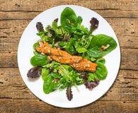 Smoked salmon braided plait with spinach Royalty Free Stock Image