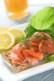 Smoked salmon on cracker Royalty Free Stock Photography