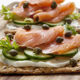 Smoked Salmon Crackers royalty free stock images