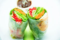 Smoked Salmon Roll with cucumber on the plate. Fresh dill smoked salmon with tangy bits of juicy orange, red capsicum and avocado wrapped in rice paper. Comes Royalty Free Stock Image