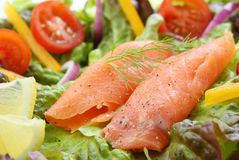 Smoked salmon rolls Royalty Free Stock Photo