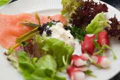Smoked salmon with salad Royalty Free Stock Image