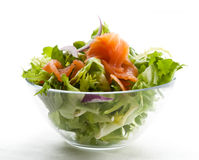 Smoked salmon salad Royalty Free Stock Photo