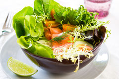 Smoked salmon salad Stock Photography