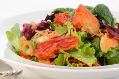 Smoked salmon salad. With fresh baby greens Royalty Free Stock Photos
