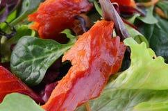 Smoked salmon salad. With fresh baby greens Royalty Free Stock Image