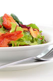 Smoked salmon salad. Smoked salmon fillet with fresh baby greens salad Royalty Free Stock Image