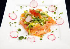 Smoked salmon salad appetizer Royalty Free Stock Photos