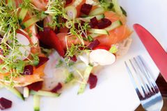 Smoked salmon salad Royalty Free Stock Photo