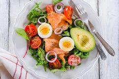 Smoked salmon salad with greens Royalty Free Stock Photos