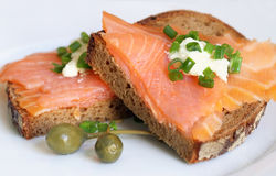 Free Smoked Salmon Sandwich Royalty Free Stock Photography - 14162707