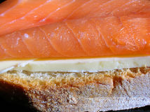 Smoked salmon sandwich close-up. Close-up of salmon sandwich with butter royalty free stock photo