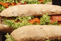 Smoked Salmon Sandwich. With cream cheese and salad Royalty Free Stock Photo