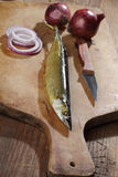 Smoked saury stock image