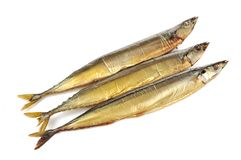 Smoked Saury Fish Royalty Free Stock Photography