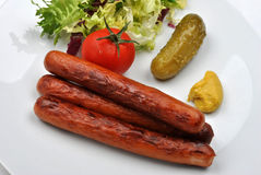 Smoked sausage and gherkin on a plate Royalty Free Stock Photo