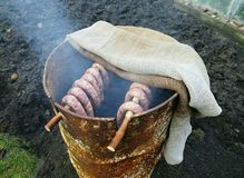 Smoked sausages in home made smokehouse in garden. Smoked sausages in traditional way Royalty Free Stock Images