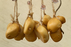 Smoked scamorza cheeses Royalty Free Stock Photos