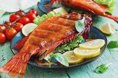 Smoked sea bass Stock Image