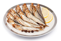 Smoked sprat-appetizing Royalty Free Stock Images