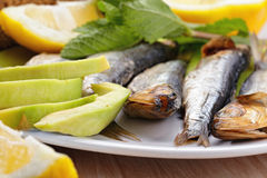 Smoked sprat fish Royalty Free Stock Images