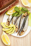 Smoked sprat fish with bread Stock Photos