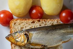 Smoked sprat fish on bread home-style white plate royalty free stock photos